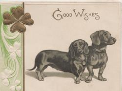 GOOD WISHES above 2 dachshunds, gilt shamrock left