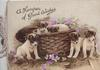 A HAMPER OF GOOD WISHES above 5 puppies, wicker basket, violets around, WHO'S COMING? at base