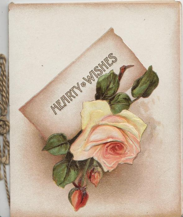 HEARTY WISHES on plaque above pink/yellow rose & 2 buds