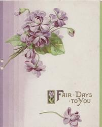 FAIR DAYS TO YOU below purple violets