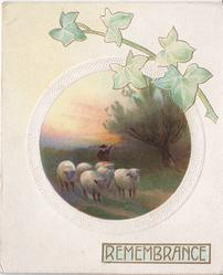 REMEMBRANCE inset of man and sheep above, exaggerated ivy leaves