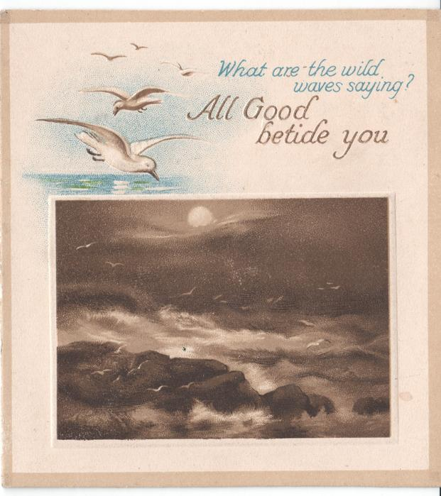 ALL GOOD BETIDE YOU -- WHAT ARE THE WILD WAVES SAYING?  seagulls in flight above crashing waves