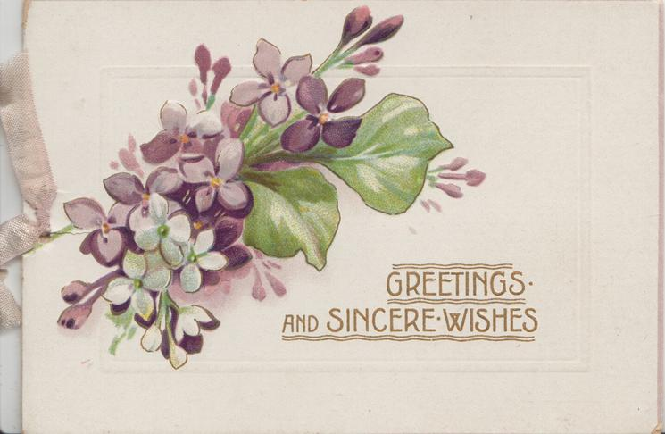 GREETINGS AND SINCERE WISHES in gilt below purple & some white violets