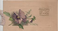 THOUGHTS OF YOU in gilt right, purple pansies left
