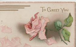 TO GREET YOU in gilt above pink rose
