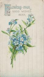 FLOWERS FAIR( illuminated) GOOD WISHES BEAR above forget-me-nots, vertical striped background