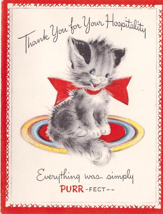 THANK YOU FOR YOUR HOSPITALITY grey kitten with large red bow EVERYTHING WAS SIMPLY PURR-FECT--