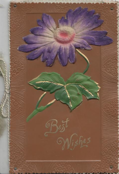 BEST WISHES in gilt below purple daisy applique on faux leather brown sheet rivetted to front cover