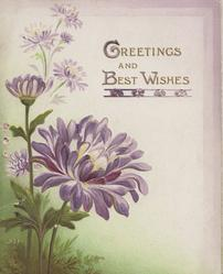 GREETINGS AND BEST WISHES in purple right, purple chrysanthemums left