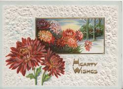 HEARTY WISHES in gilt below wintry rural inset & red chrysanthemums, embossed white border design