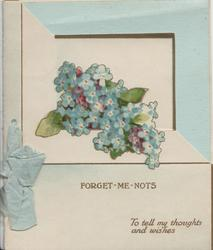 FORGET-ME-NOTS in gilt below bunch of forget-me-nots & above TO TELL MY THOUGHTS AND WISHES