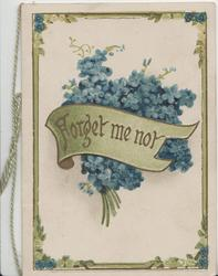 FORGET-ME-NOT in gilt on olive scroll, bunch of forget-me-nots behind, 4 designed  margins