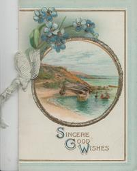 SINCERE GOOD WISHES in blue & gilt below circular sea-side inset, forget-me-nots above, 3 pale green borders