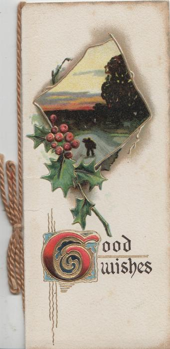 GOOD WISHES (G illuminated) below berried holly left &  inset evening winter rural scene