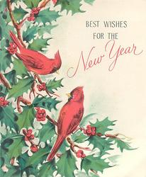BEST WISHES FOR THE NEW YEAR 2 red jay birds on holly