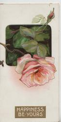HAPPINESS BE YOURS in white on gilt plaque below pink rose & bud