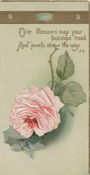 O'ER BLOSSOMS, MAY YOUR FOOTSTEPS TREAD AND JEWELS STREW THE WAY. above pink rose