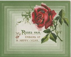 ROSES FAIR EMBLEMS OF A HAPPY YEAR below single red rose, green rectangular design as backround