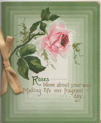 ROSES BLOOM ABOUT.... below single pink rose, green rectangular design as backround