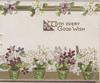WITH EVERY GOOD WISH purple & white violets in 4 green pots & design