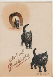 WITH ALL GOOD WISHES in red, 3 black cats walk front away from gilt horseshoe GOOD LUCK  at base