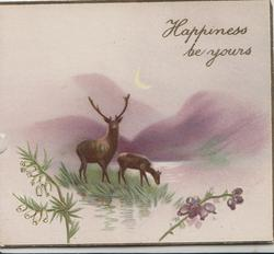 HAPPINESS BE YOURS, stag & hind at edge of loch, hills behind, scant heather below