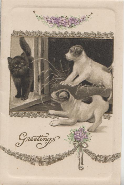 GREETINGS 2 white & brown puppies bark at black kitten coming through door, floral designs above & below