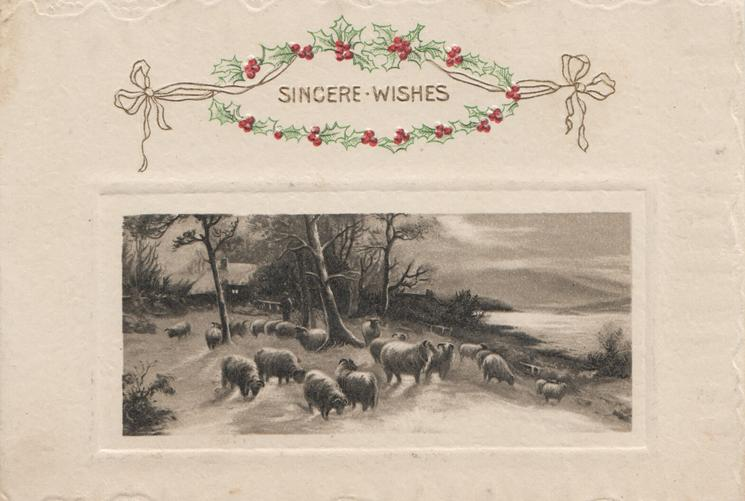 SINCERE WISHES framed by holly & design, large flock of sheep graze below leafless trees