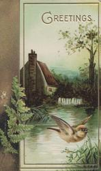 GREETINGS in gilt above bird of happiness flying over water, cottage & rural scene behind