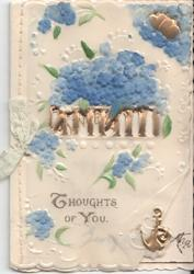 THOUGHTS OF YOU various forget-me-nots