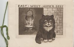 EAST -WEST-HOME'S BEST black kitten sits facing front before pot cooking over blazing fire