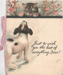 JUST TO WISH YOU THE BEST OF EVERYTHING, DEAR! puppy stands looking up at kitten behind wall, in blossom