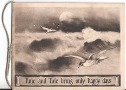 TIME AND TIDE BRING ONLY HAPPY DAYS seagulls swimming above crashing waves