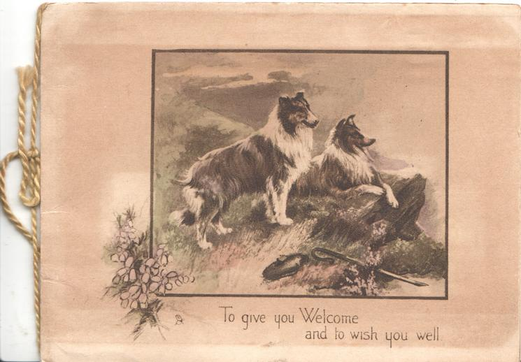 TO GIVE YOU WELCOME AND TO WISH YOU WELL 2 collies looking right, heather left, brown background