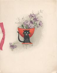 no front title, tiny black cat sits in front of red vase of pale purple daisies