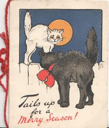 TAILS UP FOR A MERRY SEASON! black cat stands looking back at white cat on fence, moon-lit scene