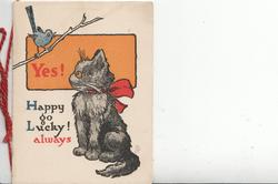 YES! HAPPY GO LUCKY! ALWAYS bird on branch squaking at black cat with red bow sitting below