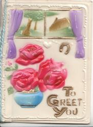 on celluloid front TO GREET YOU below three pink roses over small blue pot, 2 rural insets above, white marginal design