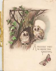 A FRIENDLY VISIT TO BRING YOU GREETING, 2 owls perched in front of tree-trunk, moon behind, ivy left, butterfly