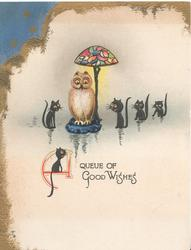 A QUEUE OF GOOD WISHES( A illuminated), owl perched below lamp in water, 5 black cats observe