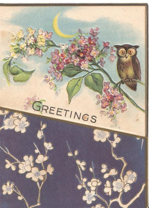 GREETINGS below owl perched on purple/white lilac, blue background below with stylised floral design, sliver of moon above