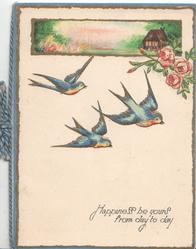 HAPPINESS BE YOURS FROM DAY TO DAY in blue below 3 flying blue birds of happiness below pink roses & small rural inset