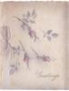 GREETINGS opt. in grey below stenciled grey & pink moss rose buds, grey ribbon left