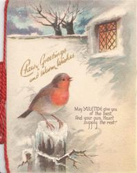 CHEERY GREETINGS AND WARM WISHES in gilt, English robin on post below, lit window above right, much snow