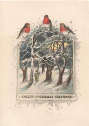 CHEERY CHRISTMAS GREETINGS below girl walking in snowy winter scene 3 English robins above