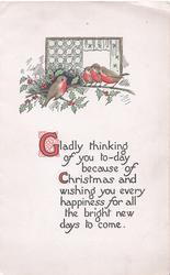 GLADLY THINKING.... below holly, 4 English robins & holly below window