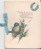 WHEN THE BLUEBIRD COMES YOUR WAY WELCOME HIM THAT HE MAY STAY bluebird of happiness perched on branch