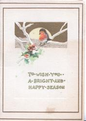 TO WISH YOU  A BRIGHT AND HAPPY SEASON berried holly, perched English robin by moonlight