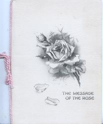 THE MESSAGE OF THE ROSE, black & white sketch of rose & bud