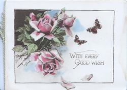 WITH EVERY GOOD WISH below pink roses  & 2 butterflies